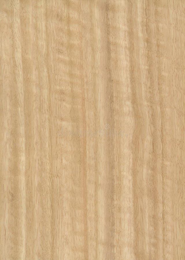 Houten het vernisjetextuur van de eucalyptus stock afbeeldingen