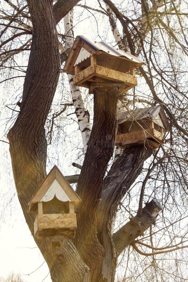 Houten het voeden troggen voor vogels stock fotografie