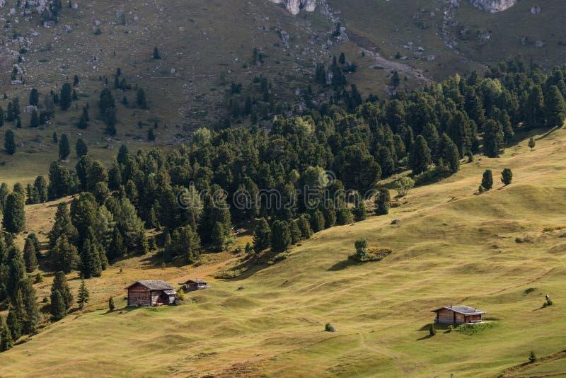 Houten hutten op alpiene weide in Dolomiet stock foto's