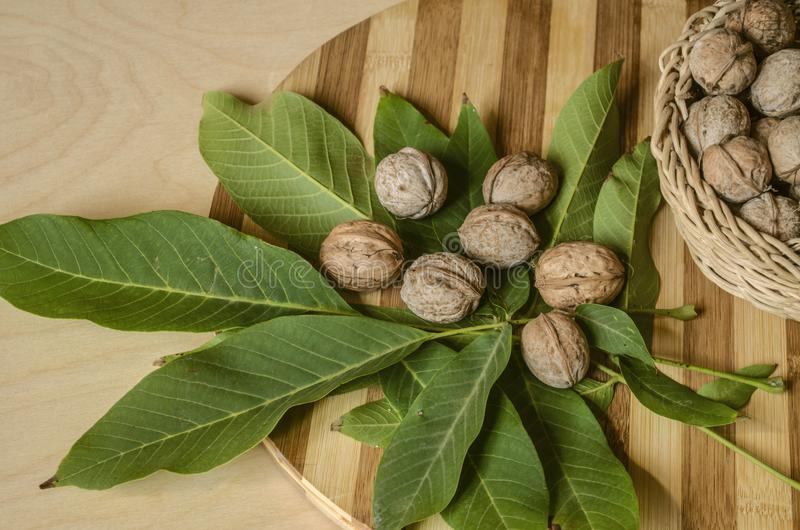 Houten keukenraad omvat met okkernootbladeren met noten en rieten die mand met noten worden gevuld royalty-vrije stock afbeelding