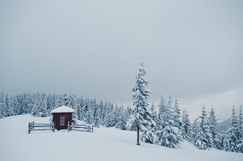 Houten kleine die kerkkapel bij pijnboombomen door sneeuw op moun worden behandeld royalty-vrije stock afbeeldingen