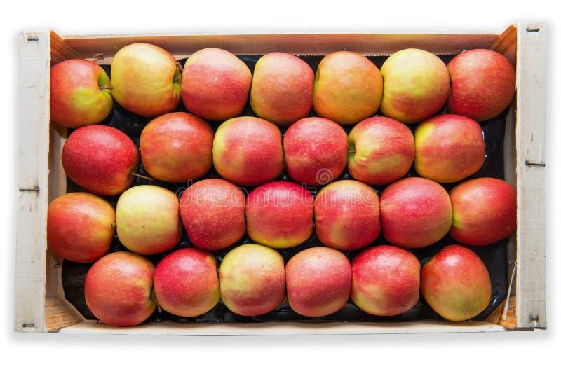 Houten krat met rode en gele appelen, op witte achtergrond royalty-vrije stock afbeelding