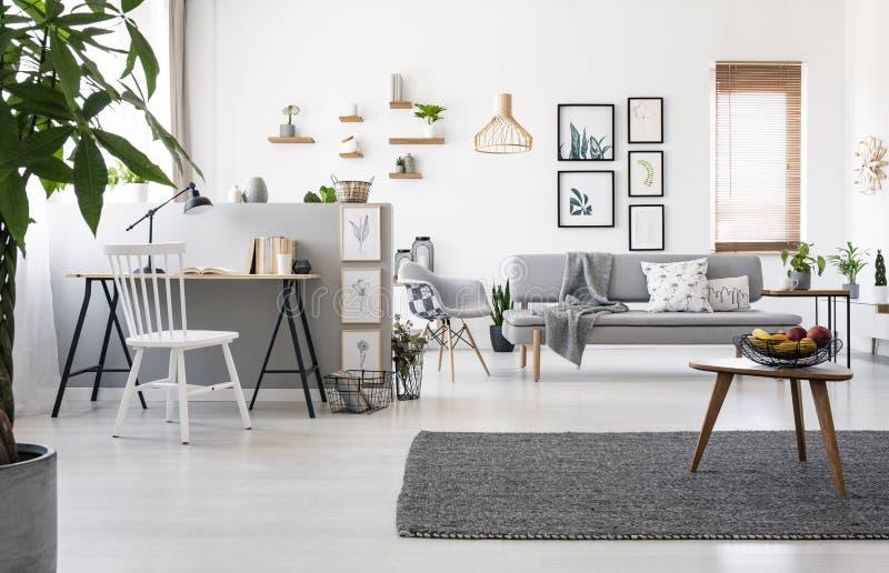 Houten lijst aangaande grijs tapijt in ruim flatbinnenland met werkruimte en affiches Echte foto stock afbeelding