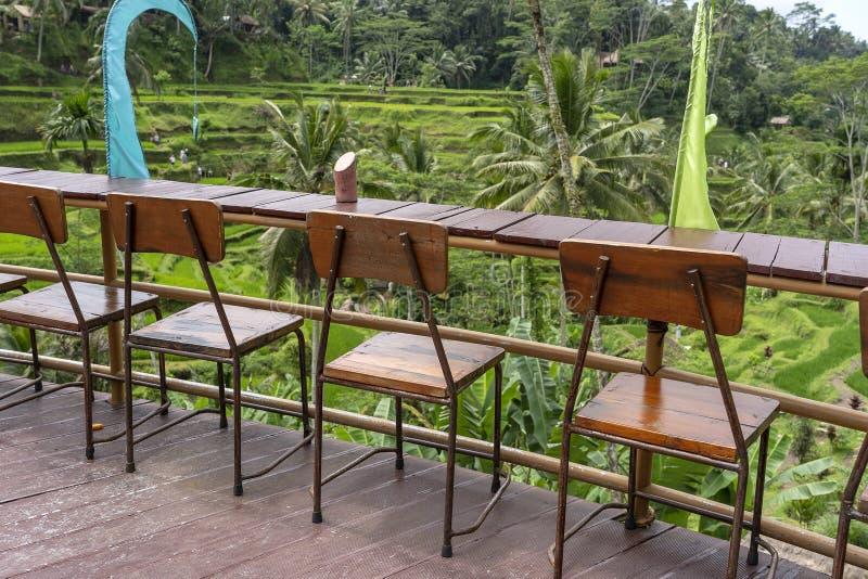 Houten lijst en stoelen in lege tropische koffie naast rijstterrassen in eiland Bali, Indonesi? stock fotografie
