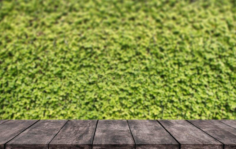 Houten lijst of planken met groene bladerenmuur waar u de showproducten kunt plaatsen een opslag stock foto