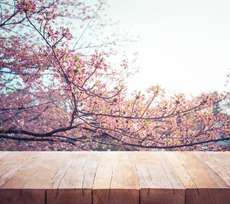 Houten lijstbovenkant op de bloem van onduidelijk beeldsakura op tuinachtergrond nave stock afbeelding
