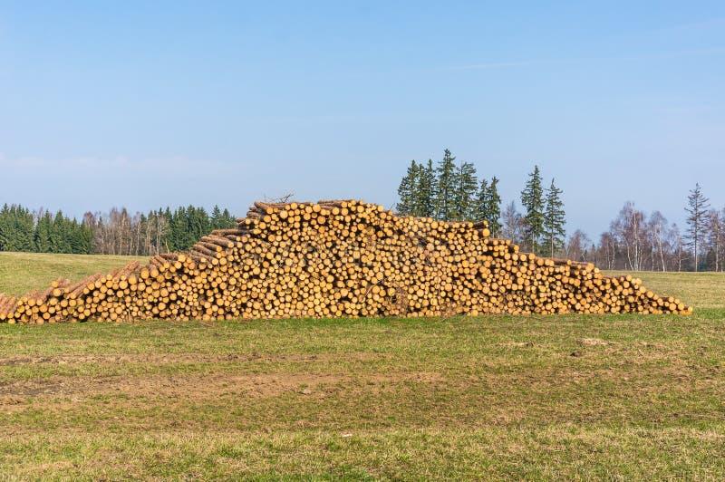 Houten logboeken of boomstammen van ter plaatse gesneden en gestapelde bomen stock afbeelding
