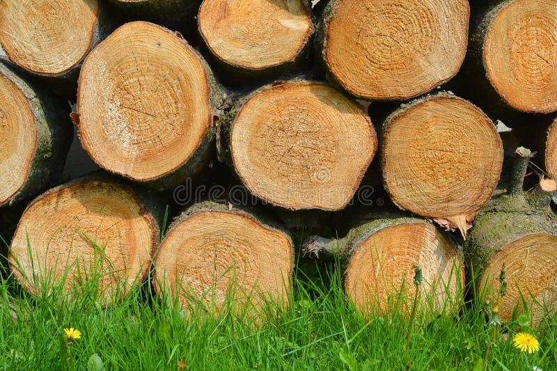 Houten logboeken en gras natuurlijke achtergrond stock foto