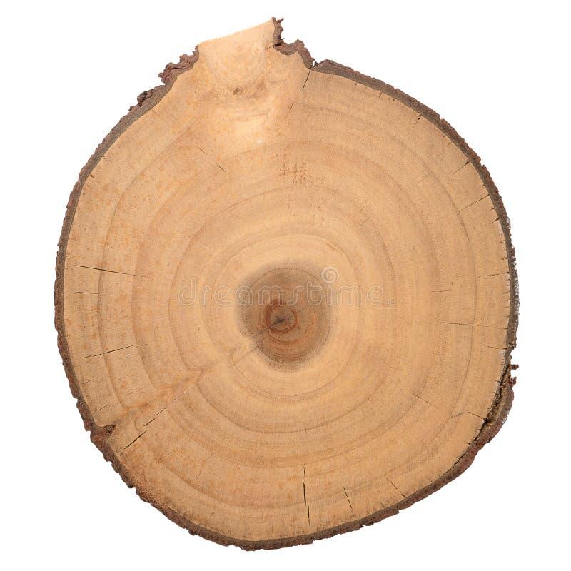 Houten logboekplak stock foto