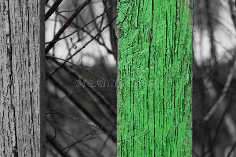 Houten omheining met één die streep aan groen wordt gekleurd stock fotografie