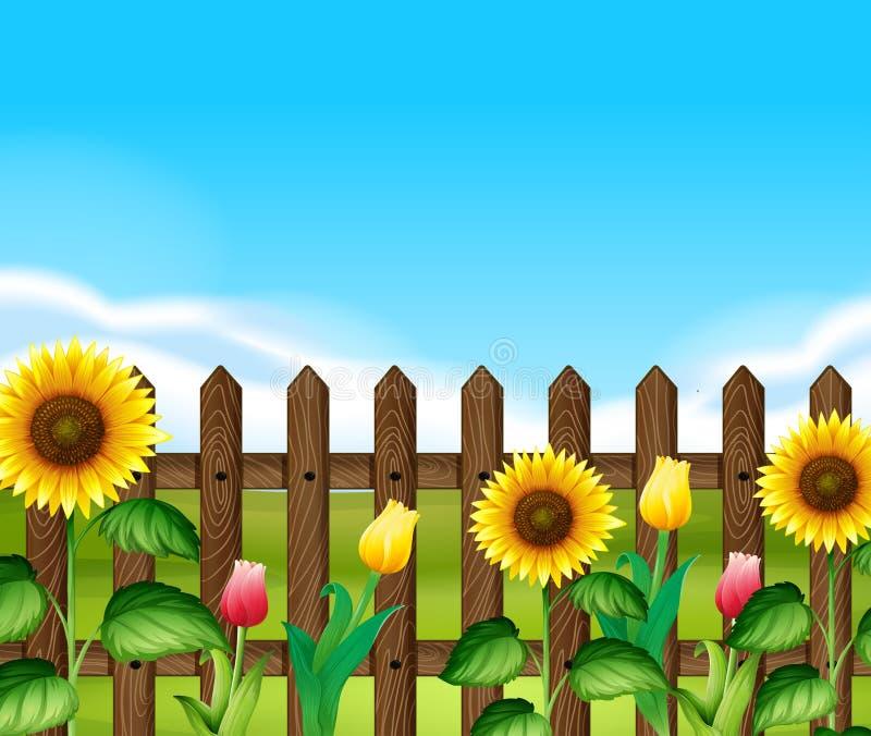Houten omheining met bloemen in de tuin royalty-vrije illustratie