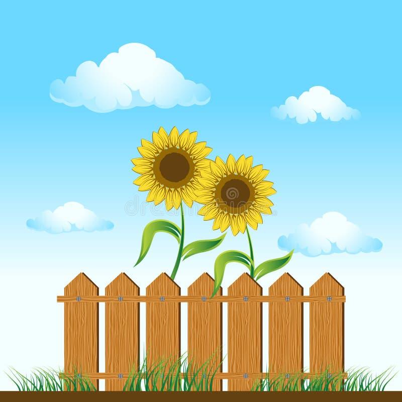 Houten omheining. zonnebloemen op me vector illustratie