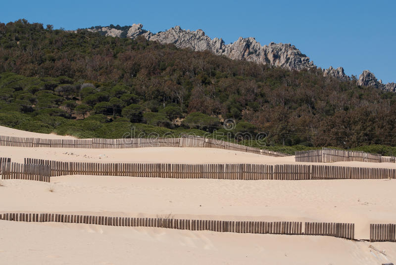 Houten omheiningen op verlaten strandduinen in Tarifa, Spanje stock foto's