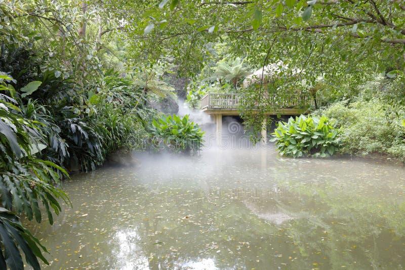 Houten paviljoen door pool in regenwoud, rgb adobe stock afbeelding