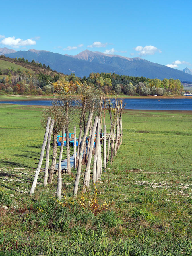 Houten pijler bij droge kust van Liptovska Mara royalty-vrije stock fotografie