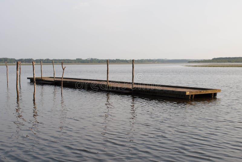 Houten pijler en boom in het Soustons-meer, de Landes royalty-vrije stock fotografie