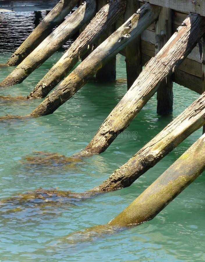 Houten pijlerpolen in water stock fotografie
