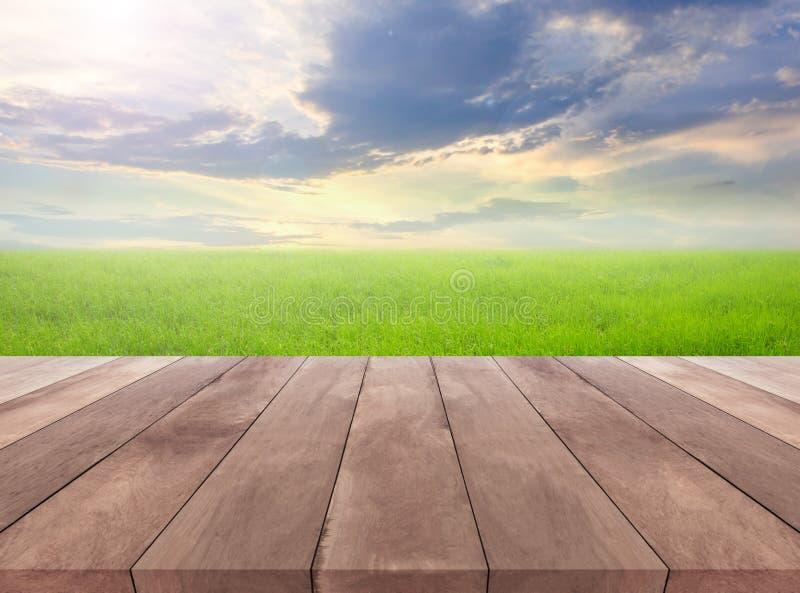Houten plank en natuurlijk grasgebied met hemelachtergrond stock afbeeldingen