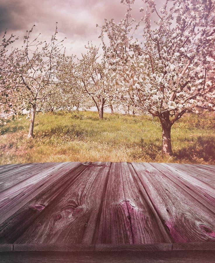Houten planken met appelboomgaard op achtergrond stock foto