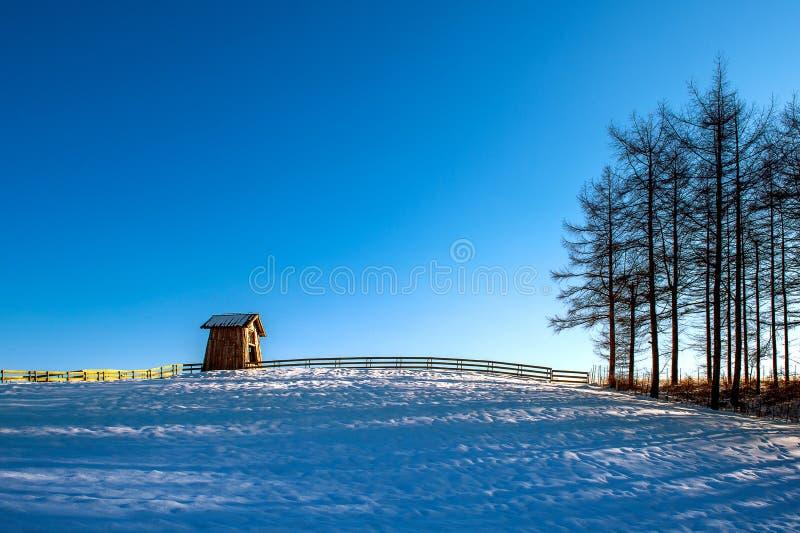 Houten plattelandshuisje in de winter Het Landbouwbedrijf van Daegwallyeongschapen in Gangwondo royalty-vrije stock afbeelding