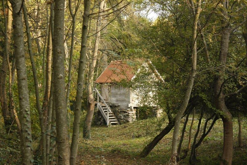 Houten plattelandshuisje op pijlers van steen en houten buitentrap in een bos stock fotografie