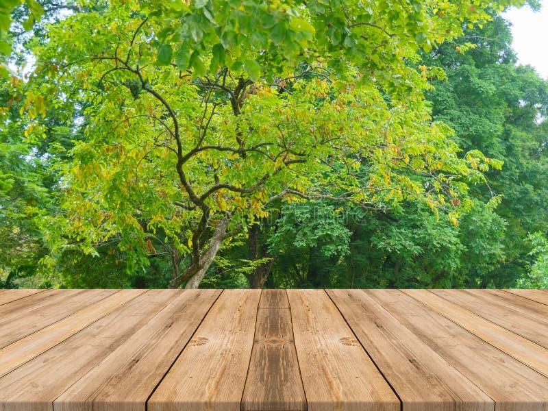 Houten raads lege lijst voor bosachtergrond Perspect stock afbeelding