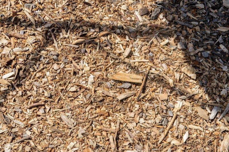 Houten spaanders en reepjes die van droog hout, op de grond liggen royalty-vrije stock afbeelding