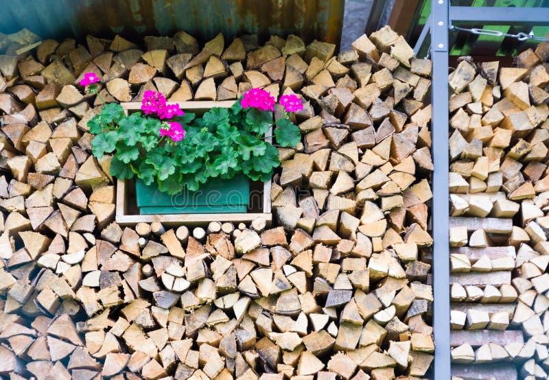 Houten stapel met geranium royalty-vrije stock foto's
