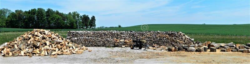 Houten stapel, houten splitser en hoop van hout royalty-vrije stock afbeelding