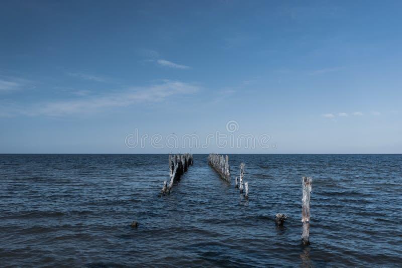 Houten stapelsligplaats in de Oostzee royalty-vrije stock foto's