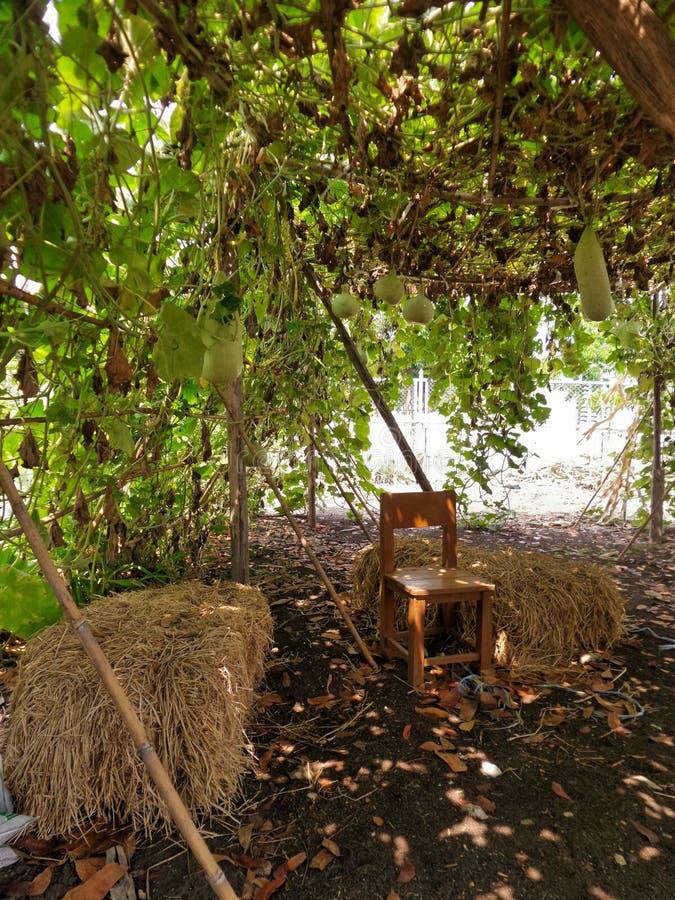 Houten stoel naast stapel van hooi onder de tunnel van de Flessenpompoen royalty-vrije stock afbeelding