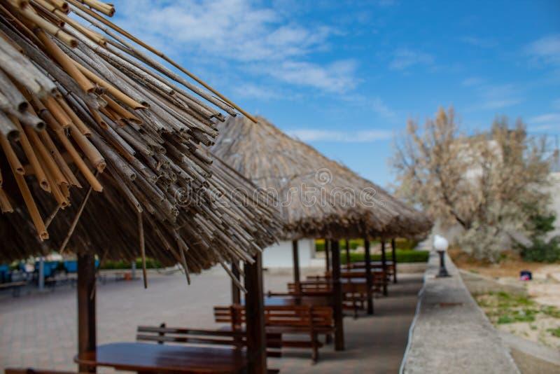 Houten strandparaplu's op een rij, met stoelen en lijsten royalty-vrije stock foto