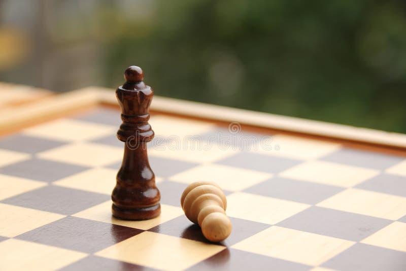 Houten stukken, schaakkoningin en gras, wit en donkerbruin op het schaakbord, concept van het spel, ondergeschiktheid, verlies, d stock fotografie