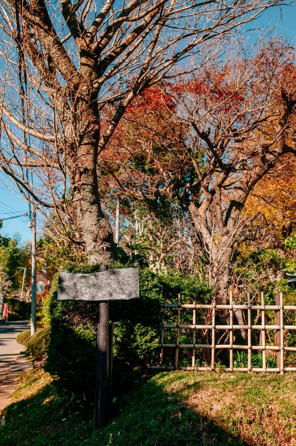 Houten teken en de herfstgebladerte in Sakura-stad, Chiba, Japan stock foto's