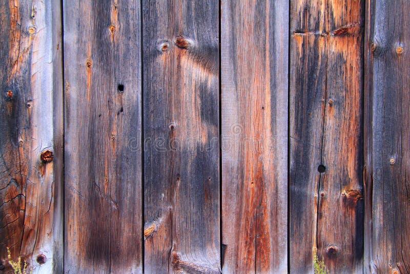Houten texturen, Houten paneelachtergrond, Textuur van houten raad stock foto's