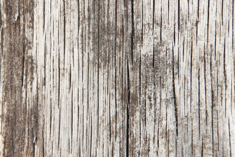 Houten Textuur Als achtergrond royalty-vrije stock foto