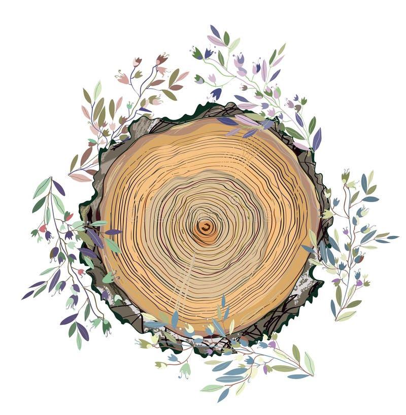 Houten textuur en bladerenkader voor de kaart, banner of de promotieachtergrond, grafische illustratie stock illustratie