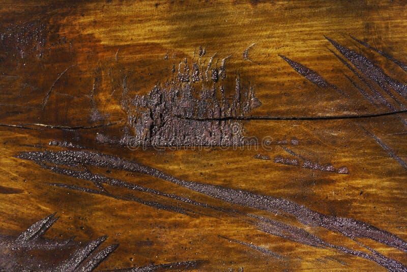 Houten textuur van gesneden boomboomstam, close-up royalty-vrije stock fotografie