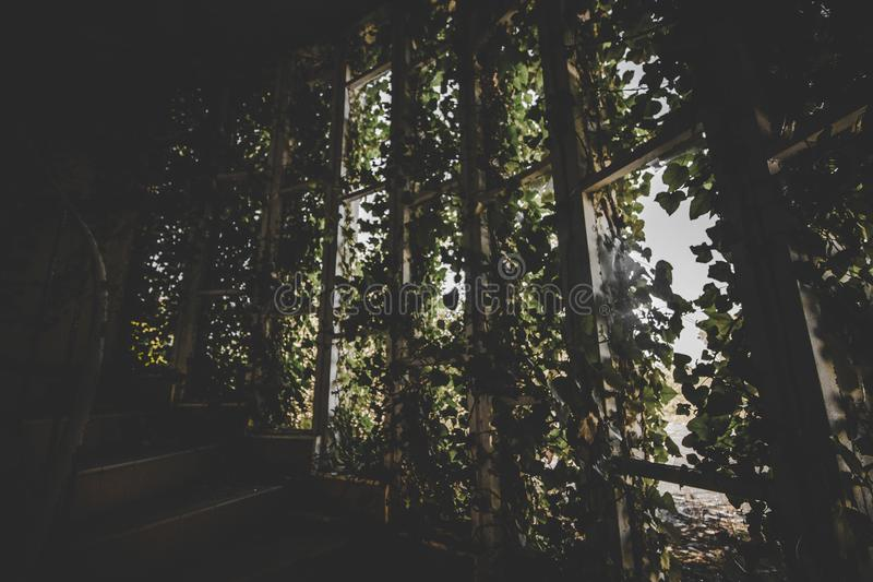 Houten trap met groene lederen planken decors royalty-vrije stock foto's