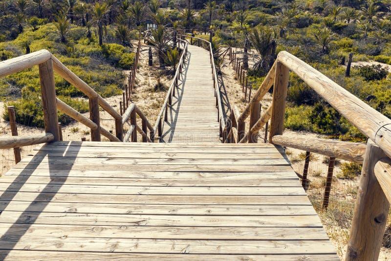 Houten trap neer aan het park op zandduinen royalty-vrije stock foto