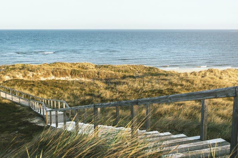 Houten trappen door duinen en gras op Sylt-eiland naar zee stock afbeelding