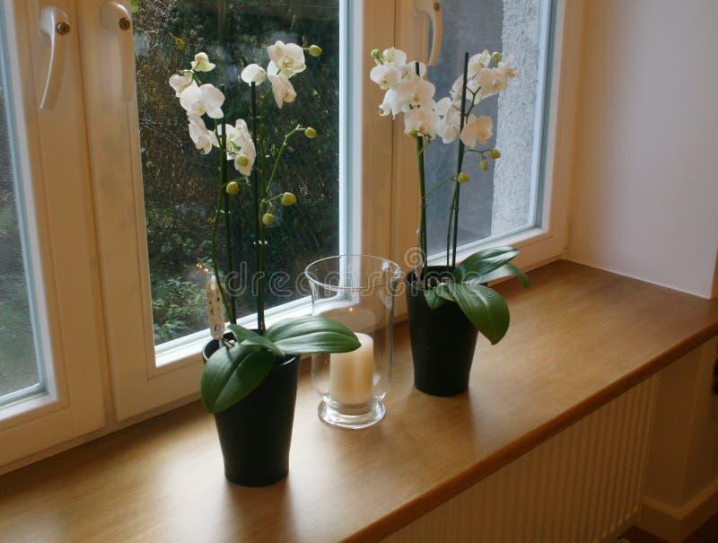 Houten vensterrichel stock afbeelding