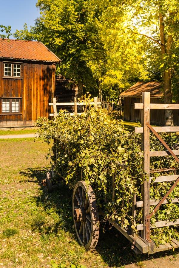 Houten vervoer op het traditionele Noorse landbouwbedrijf stock afbeelding