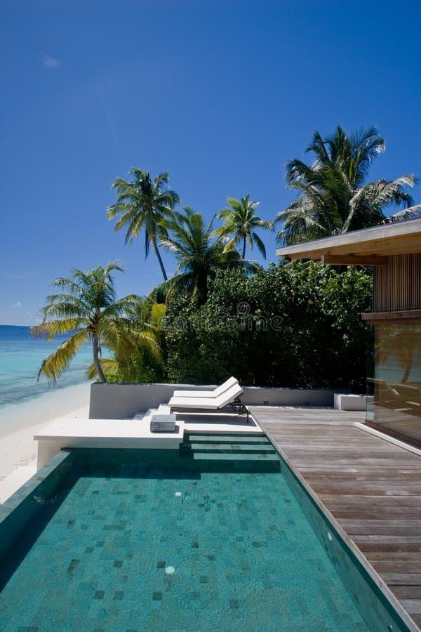Houten villa met grote pool dichtbij oceaan stock foto's