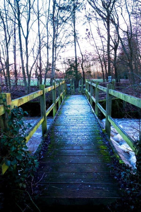 Houten voetbrug in een hout over een rivier, een laag van sneeuw op Th royalty-vrije stock fotografie