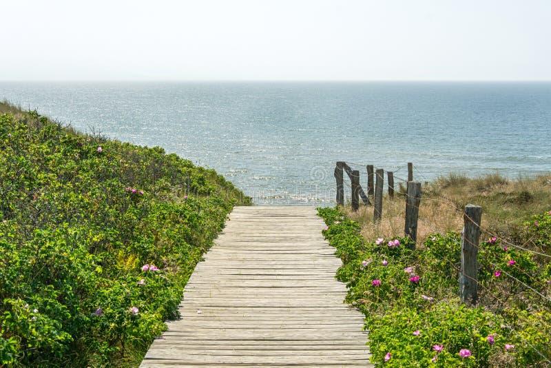 Houten voetweg die naar de oceaan leiden royalty-vrije stock afbeeldingen