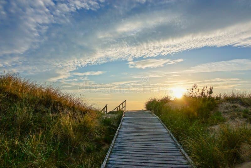 Houten weg bij Oostzee over zandduinen met oceaanmening, de avond van de zonsondergangzomer stock afbeeldingen