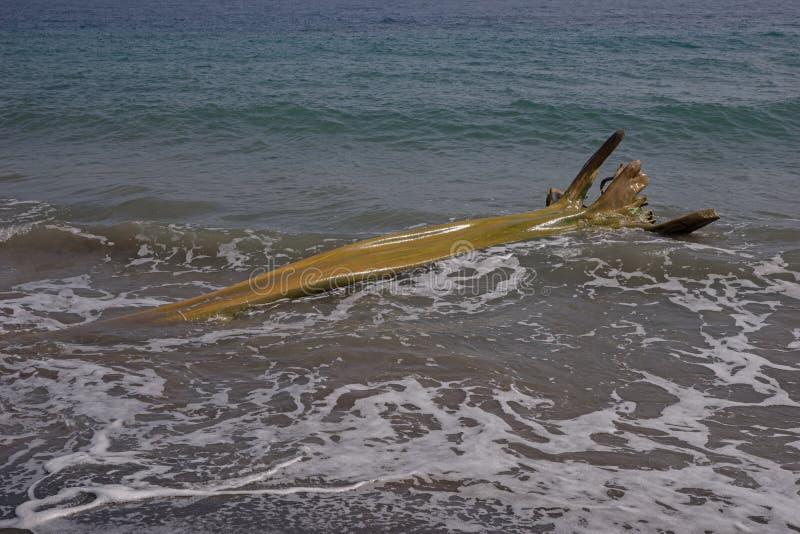 Houten wrakstukken op Caraïbisch strand royalty-vrije stock afbeeldingen