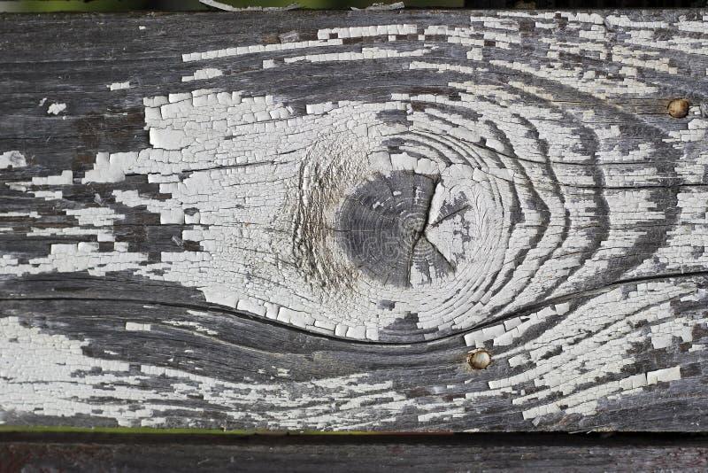 Houtextuur Wandwand van wasborden Achtergrondpatroon van hout Toon groeiringen stock foto's