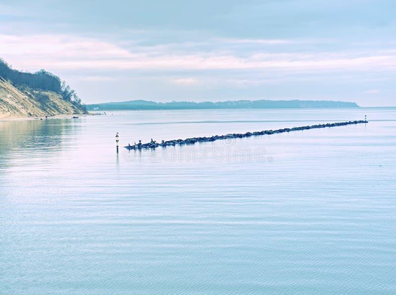 Houtgolfbrekers op het strand bij de Noordzee Humeurige overzees stock afbeeldingen